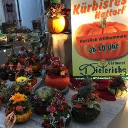 Kuerbisfest-Wolfsburg
